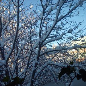 bulgaria_sofia_winter2016_5
